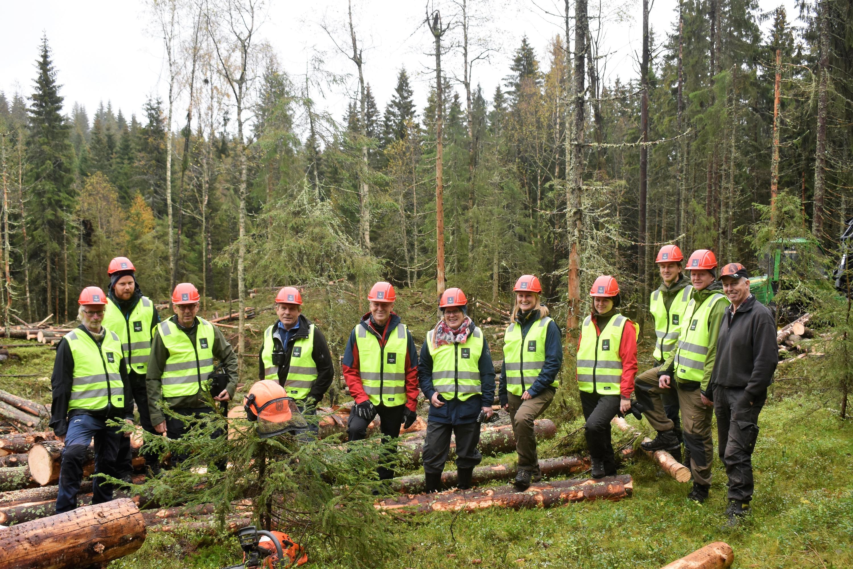 PArtiet SV ut i felt med skogbruket